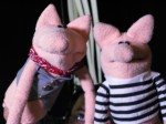 Our pig actors pose for a photo. Puppets by Noah Ginex, costumes by Rebecca Miller.